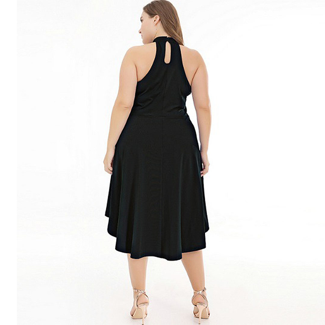 Plus Size Women Black A Line Sleeveless Halter High Low